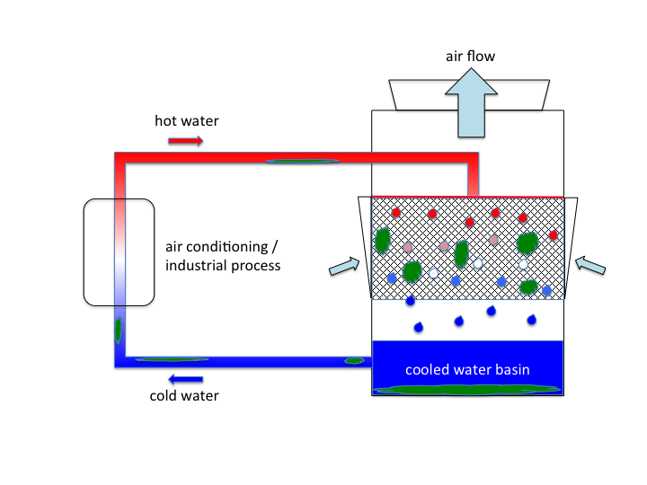 Figure 2: Typical design of a cooling tower. Hot water (red) is sprayed over a mesh and mixed with air to cool it down. Cold water (blue) is collected in the bottom basin. Biofilms (green) may develop in the system.
